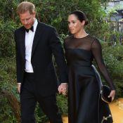Meghan Markle et le prince Harry : Leur nouvel hommage à Diana