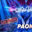 """Portrait et performance du Paon, personnage de """"Mask Singer"""", sur TF1."""