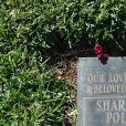 Photos de la tombe de Sharon Tate et de son enfant Paul Richard Polanski dans la cimetière Sainte-Croix à Culver en Californie. Sharon Tate a été assassiné par la 'Manson Family' alors qu'elle était enceinte de 8 mois, le 9 août 1969. La tombe de ces derniers a été photographié au lendemain de la mort de Charles Manson.