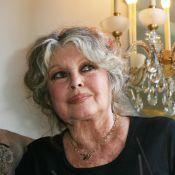 Mort de Michel Piccoli : l'hommage de Brigitte Bardot, sa partenaire du Mépris