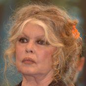 """Brigitte Bardot, sa famille """"éparpillée"""" : """"Les contacts sont difficiles..."""""""