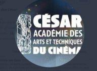 César : Véronique Cayla et Eric Toledano, nouveau tandem pour sortir de la crise