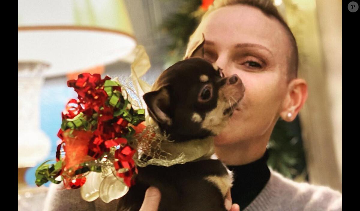 Charlene de Monaco, le crâne rasé : Noël détonant avec Albert, les jumeaux et Stéphanie
