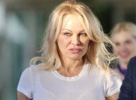 """Pamela Anderson """"briseuse de ménage"""" : son mari, Dan Hayhurst, était en couple quand ils se sont rencontrés !"""