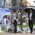 Le prince William, duc de Cambridge, le prince Harry lors de la visite du Sunken Garden dédié à la mémoire de Lady Diana à Londres le 30 août 2017.