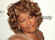 Whitney Houston demande 1.4 million de dollars pour participer à un concert de charité...