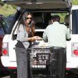 Camilla Alves fait ses courses à Malibu (20 février 2010)