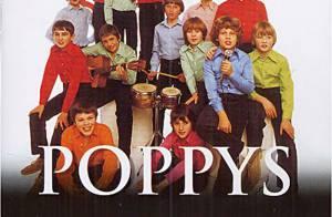 Les Poppys perdent leur procès contre Universal... C'est la fin d'un long combat !