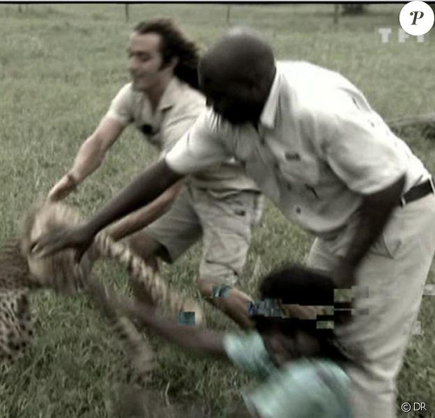Agression par un guépard !