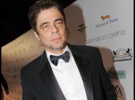 Benicio Del Toro peut-il faire mieux qu'Eva Mendes et Salma Hayek ?
