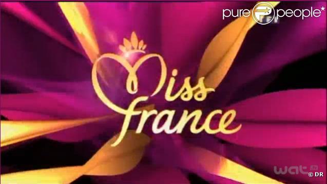 La cérémonie de Miss France 2011, diffusée sur TF1 le samedi 4 décembre, a permis à TF1 d'engranger 5,5 millions d'euros de recettes publicitaires.