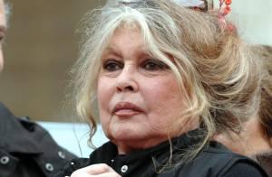 Top Chef dans le collimateur de Brigitte Bardot !