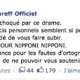 Michel Polnareff a posté un message sur son compte Facebook, en soutien aux japonais sinistrés par le séisme et le tsunami qui ont ravagé le pays, le 11 mars 2011.