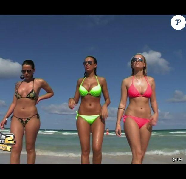 Trois bombes à la plage : Daniela, Julie et Caroline dans les Anges de la télé-réalité 2, Miami Dreams !