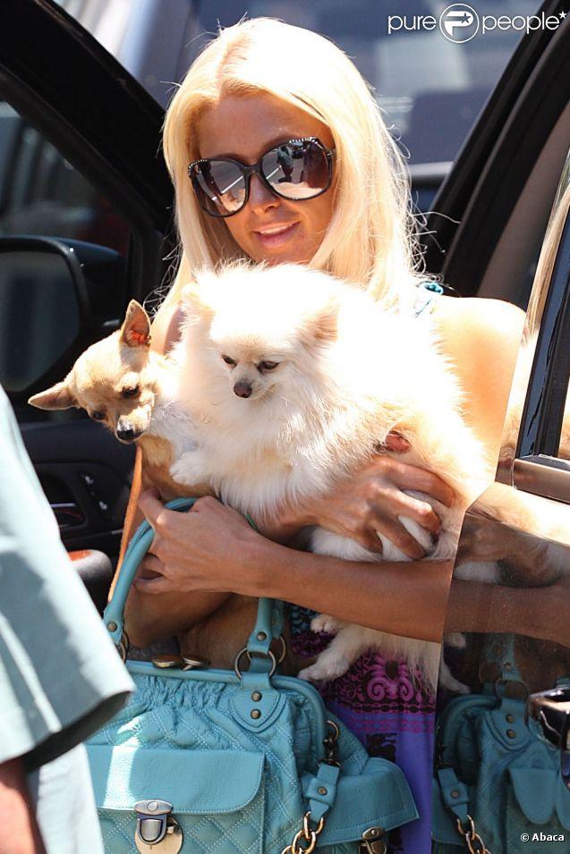 Paris Hilton se promène à Los Angeles avec ses deux chiens, vendredi 1er juillet.