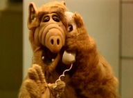 Flashback : Alf ! Kate, Willy, Lynne, Brian, et Alf... Que sont-ils devenus ?
