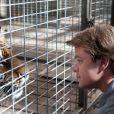 Image du film We Bought a Zoo avec Matt Damon