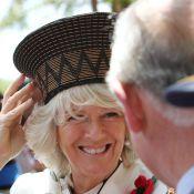 Le prince Charles et Camilla en Afrique du Sud radieux, adoptés par les Zoulous