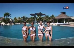 Miss France 2012 : Les 33 candidates se dévoilent en bikini auprès des dauphins