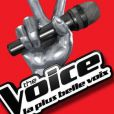 The Voice  est diffusée sur TF1 tous les samedis soirs à 20h50.