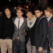 One Direction : Les cinq chatons bientôt héros de leur propre sitcom